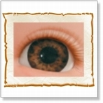 7504 - Eyes :  HQ acryl ogen Tiger Brown