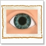 7508 - Eyes :  HQ acryl ogen Darling Blue