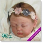 AW300250 - Dollkit 18  - Emalyn Limited 600 st