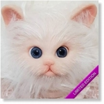 309113 - Dollkit 14 -  Marbles - Limited 220 - € 82,50 - Pre Order