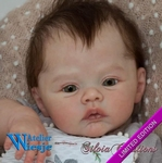 300324 - Dollkit 20  - Meadow  Limited Edition € 104,90 - Pre Order