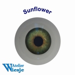 631200 - Eyes : Polyglass ogen  Sunflower